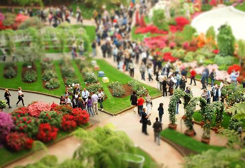 Euroflora in miniatura by .sammytd