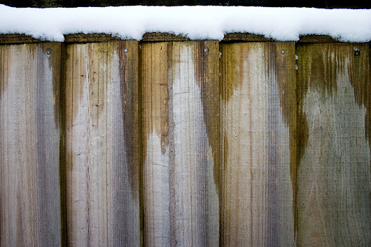 Blog - How to Protect a Wooden Fence in Winter
