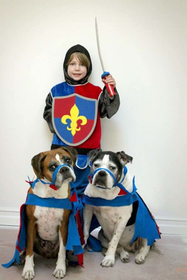 Pet And Owner Matching Costumes Free Wiring Diagram For You