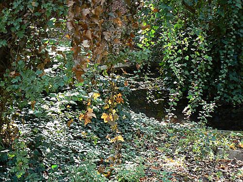 jardin clicique Blomet.jpg