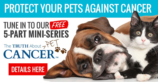 The Truth About PET Cancer: Facebook LIVE!