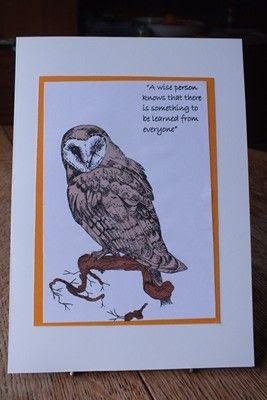 Owl. photo m_12345678DSCF8476_zpsrak5rgbb.jpg