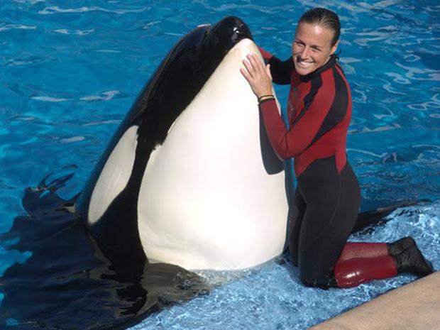 Dawn Brancheau com um das orcas do parque (Foto: AP)