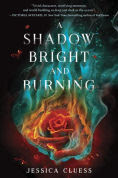 Title: A Shadow Bright and Burning (Kingdom on Fire Series #1), Author: Jessica Cluess