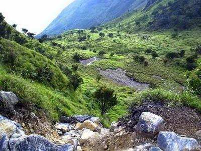 Satu tempat yang hampir selalu dijumpai di kebanyakan gunung yaitu apa  yang disebut seba Fenomena Pasar Setan di Lereng-Lereng Gunung