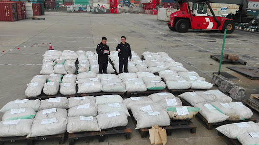 China Announces Its Largest-Ever Seizure Of Trafficked Pangolin Scales