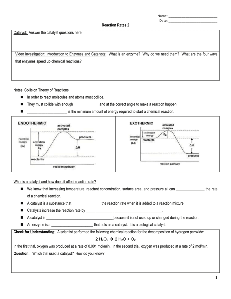 worksheet. Enzyme Worksheet. Worksheet Fun Worksheet Study Site