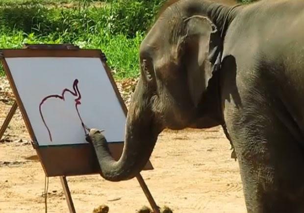 Elefanta Suda virou sensação ao pintar elefante em quadro na Tailândia (Foto: Reprodução/YouTube/FSchleyhahn)
