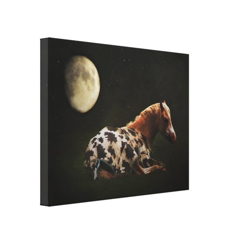 Bedtime Stretched Canvas Print
