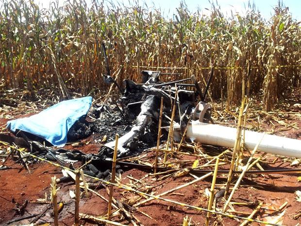 Queda de helicóptero em milharal mata duas pessoas em Ribeirão Preto, SP (Foto: Rodolfo Tiengo/G1)