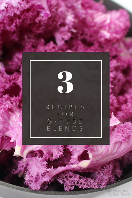 3 Recipes for G-Tube Blends with Fresh, Whole Foods - Little Mama Jama