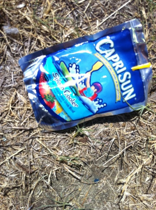 Image result for empty capris sun juice bags in a park