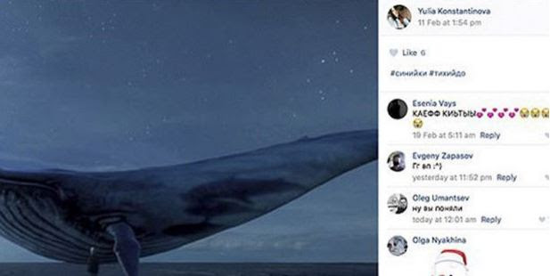 One teen had posted a picture with big blue whale, seen as a symbol of a social media movement encouraging children to take their own lives. Photo / The Siberian Times / Facebook