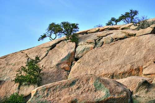 Enchanted Rock with Trees Growing from Cracks by Greg Carley.