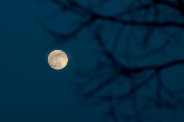 Risultati immagini per luna piena di luglio