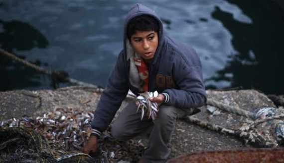 Un bambino palestinese raccoglie del pesce al porto di Gaza. Foto: REUTERS/Mohammed Salem)