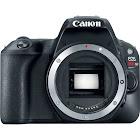 Canon EOS Rebel SL2 24.2 MP SLR - Black - Body Only