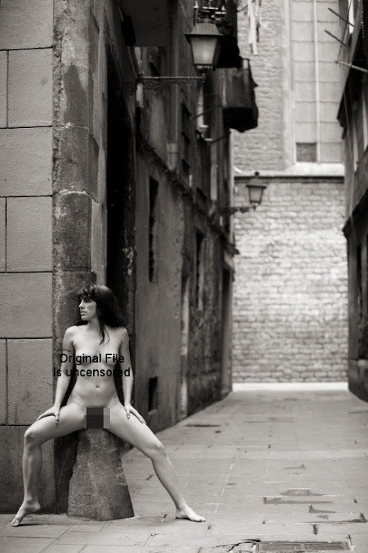 The Barcelona Album Screen Res pdf by DanielBauerArtNude on Etsy