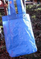 blue tarp1