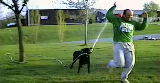 Revenge-seeking dog hoses owner down