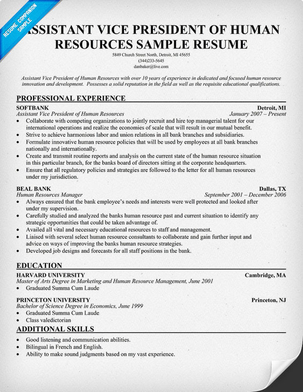 Sample Cover Letter: Sample Resume Vp Human Resources