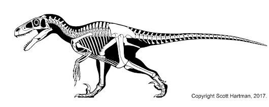 At long last... Utahraptor
