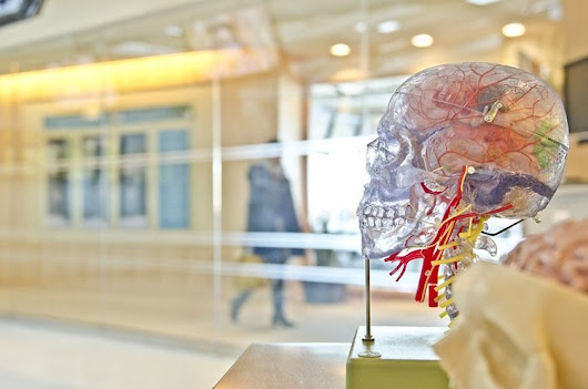 Dementia Risk Doubles Following Concussion The study's results add to a volu...