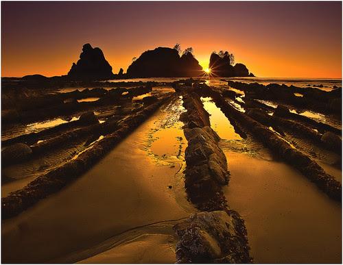 Shi Shi Beach SunBurst por kevin mcneal