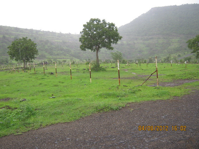 Silicon City Plots -Visit Xrbia - Nere Dattawadi, on Marunji Road, approx 7 kms from KPIT Cummins at Hinjewadi IT Park - 156