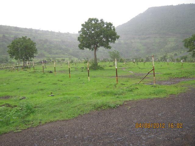 Silicon City Plots -Visit Xrbia - Nere Dattawadi, on Marunji Road, approx 7 kms from KPIT Cummins at Hinjewadi IT Park - 156
