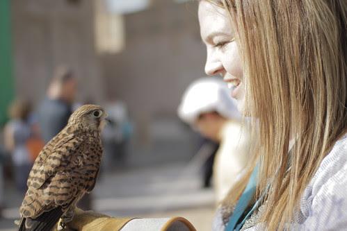 Technicolour Zoe with Eagle