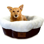 American Kennel Club Akc3806 High Wall Tufted Round Pet Bed, 31""