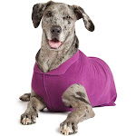 Gold Paw Stretch Fleece Dog Coat – Soft, Warm Dog Clothes, Stretchy Pet Sweater, Size 18 - Eggplant