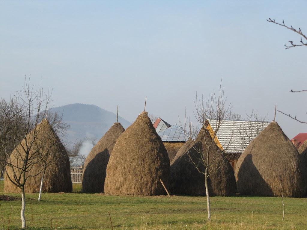 Săpânţa haystacks