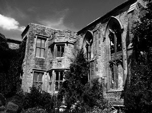 Ruined House B&W: Im happy for anyone to use any of my shots restriction free. I would only ask that they not be used for political, sexual or hate purposes, in keeping with the spirit of SXC.Also I would appreciate a quick mail to let me know how you've used the shot, jus