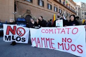 Muos, Niscemi in piazza il console Usa sfida la protesta