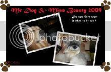 Mr Dog & Miss Beauty 2009