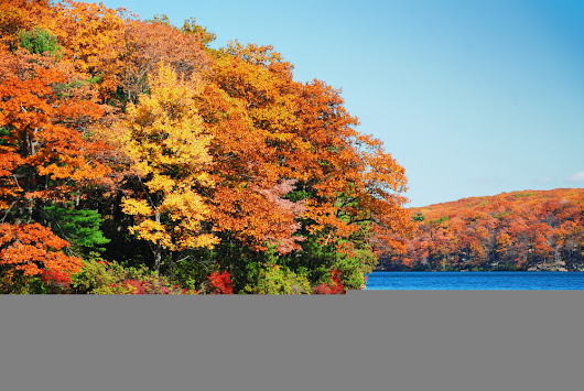 Best Road Trips for Fall Foliage Ontario | Logel's Auto Parts Kitchener
