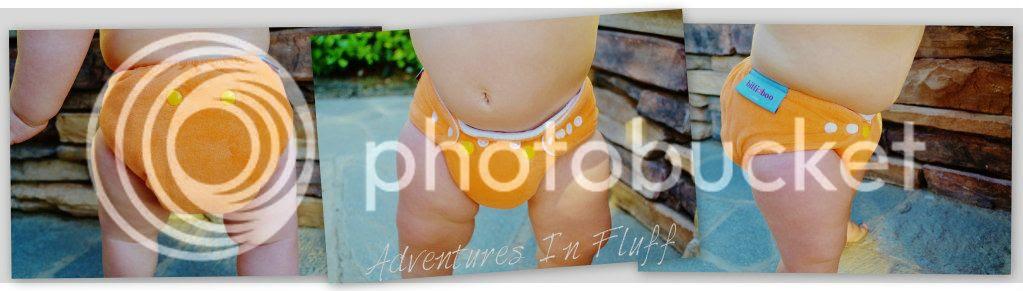itti bitti bitti boo fitted cloth diaper - close up