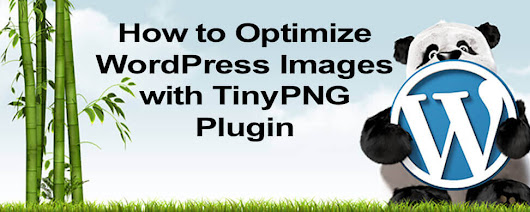 How to Optimize Images with TinyPNG - WordHer