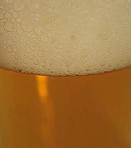 bohemian czech pilsner by bohemian brewery