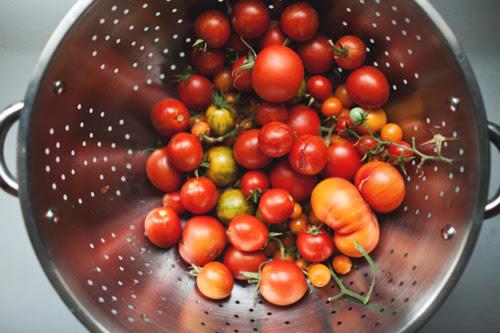 tomato2 copy
