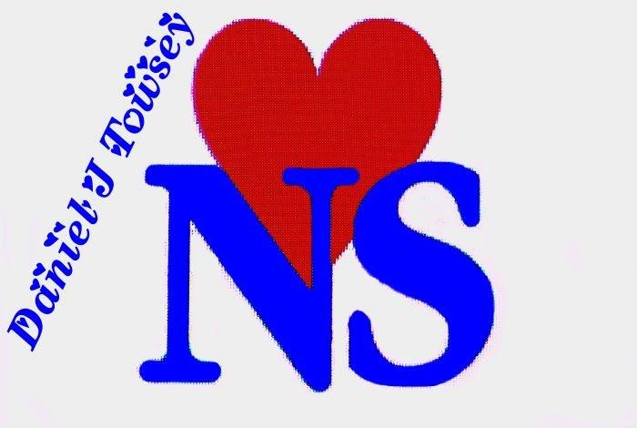 N S Name Wallpaper Love Game Wallpaper