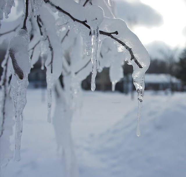 anteketborka.blogspot.com, hiver4