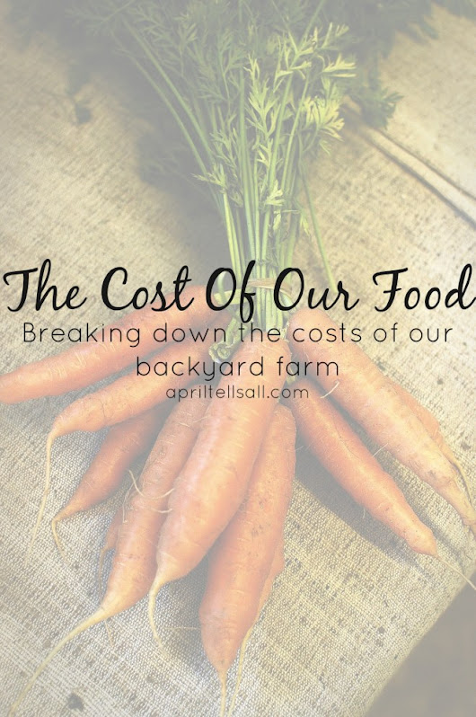 The Cost of Our Food | April Tells All