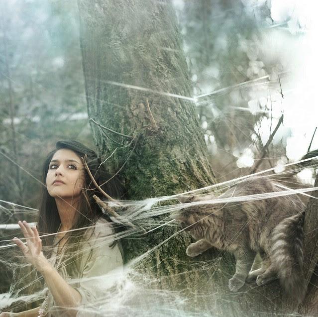 the webs we weave..