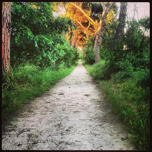 Segui il sentiero...