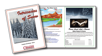 Creation Illustrated Unit Study Snow