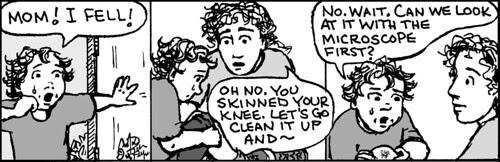 Home Spun comic strip #807
