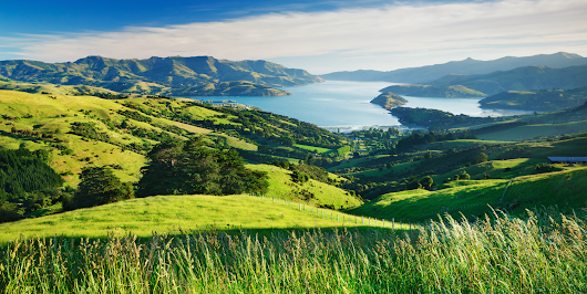 New Zealand Will Give You a Free Trip to Travel There for a New Job